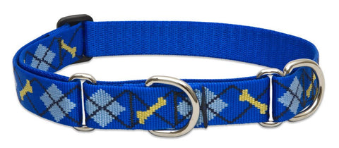 "Hollywood Feed - Lupine Adjustable Combo Collar (Large Dog) - Dapper Dog - 1"" - Martingale Collar"