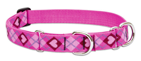 "Hollywood Feed - Lupine Adjustable Combo Collar (Large Dog) - Puppy Love - 1"" - Martingale Collar"