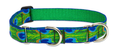 "Hollywood Feed - Lupine Adjustable Combo Collar (Large Dog) - Tail Feathers - 1"" - Martingale Collar"