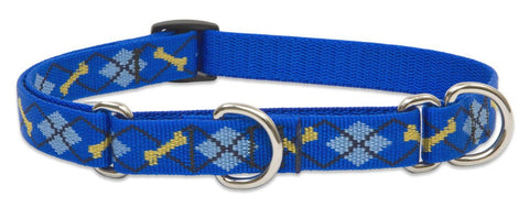 "Hollywood Feed - Lupine Adjustable Martingale Collar (Medium Dog) - Dapper Dog - 3/4"" - Martingale Collar"