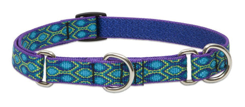 "Hollywood Feed - Lupine Adjustable Martingale Collar (Medium Dog) - Rain Song - 3/4"" - Martingale Collar"