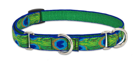 "Hollywood Feed - Lupine Adjustable Martingale Collar (Medium Dog) - Tail Feathers - 3/4"" - Martingale Collar"