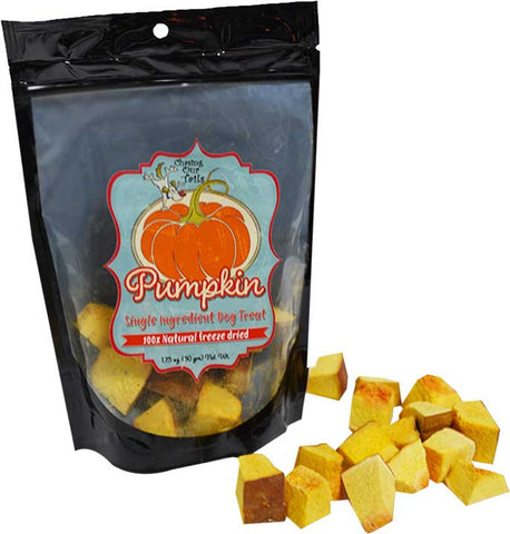 Chasing Our Tails - Freeze Dried Pumpkin Chunks - 1.75oz