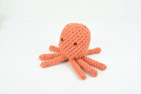 Hollywood Feed - Hollywood Feed Rope Toy - Octopus - Rope Toy - 1