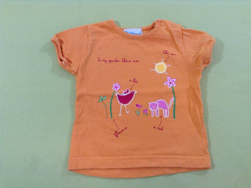 T-shirt m.c orange poule chat