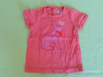 T-shirt m.c orange lapin