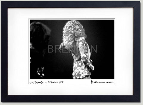 Led Zeppelin - Olympia Stadium Detroit - Robert Plant
