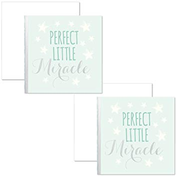 C.R.Gibson Perfect Little Miracle Gift Enclosure Card Sentimen