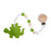 Glitter & Spice Teether - Grasshopper Green - CanaBee Baby
