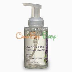 Green Cricket Foaming Hand Wash Lavender - CanaBee Baby