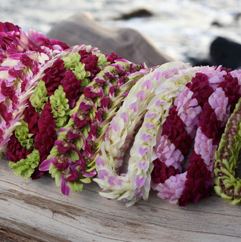 Fresh Leis from Hawaii, beautiful Orchid Leis, Graduation Leis, Hawaiian Leis,  Hawaiian Lei