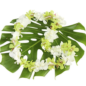 Single white and green Lei