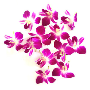 Purple Loose Orchid Blooms (100 Pieces)