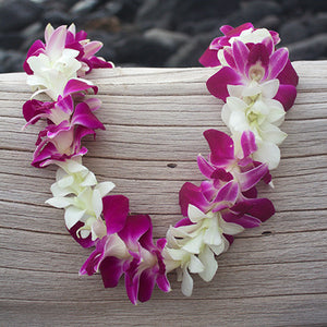Purple and white orchid Lei fresh lei hawaiian leis orchid lei fresh orchid leis leis from hawaii delivered leis shipped