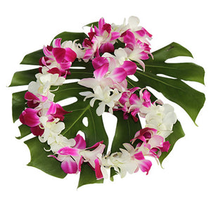 purple & white orchid lei