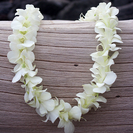 Single White Orchid Lei Supersaver Pacific Leis