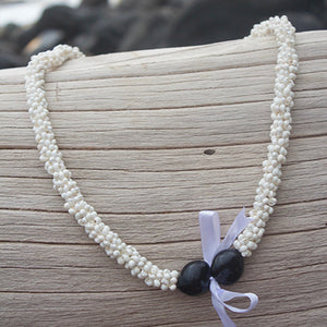 white mongo shell hawaii