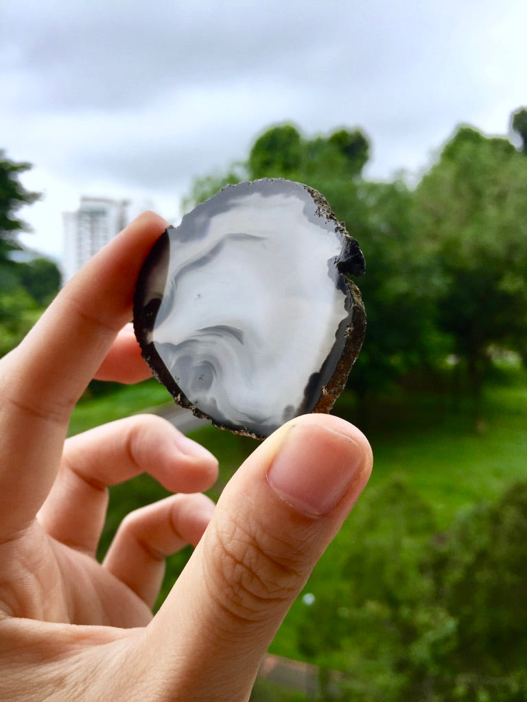 Agate Slice #44  by Vivian Lam