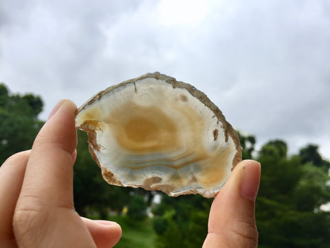 Agate Slice #35 by Vivian Lam