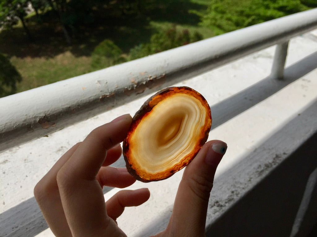 Agate Slice #16 by Vivian Lam
