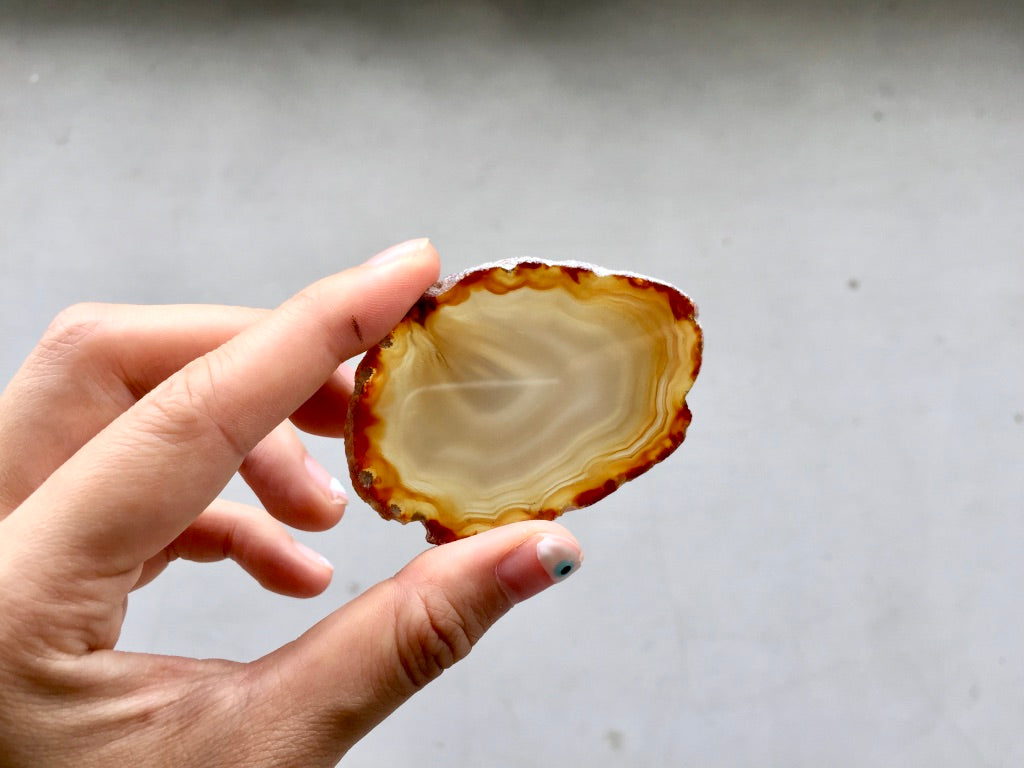 Agate Slice #17 by Vivian Lam