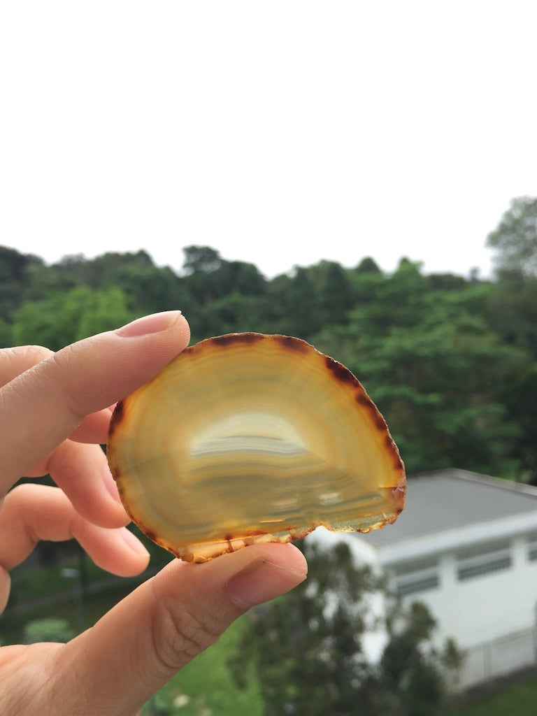 Agate Slice #33 by Vivian Lam