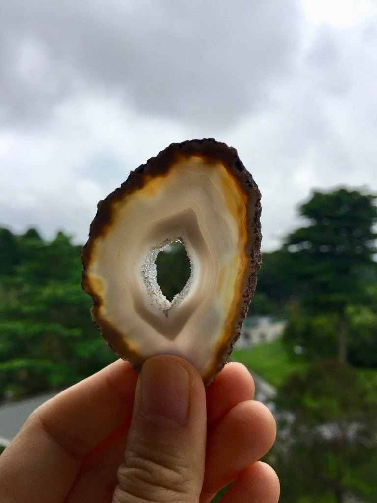 Agate Slice #18.5 by Vivian Lam