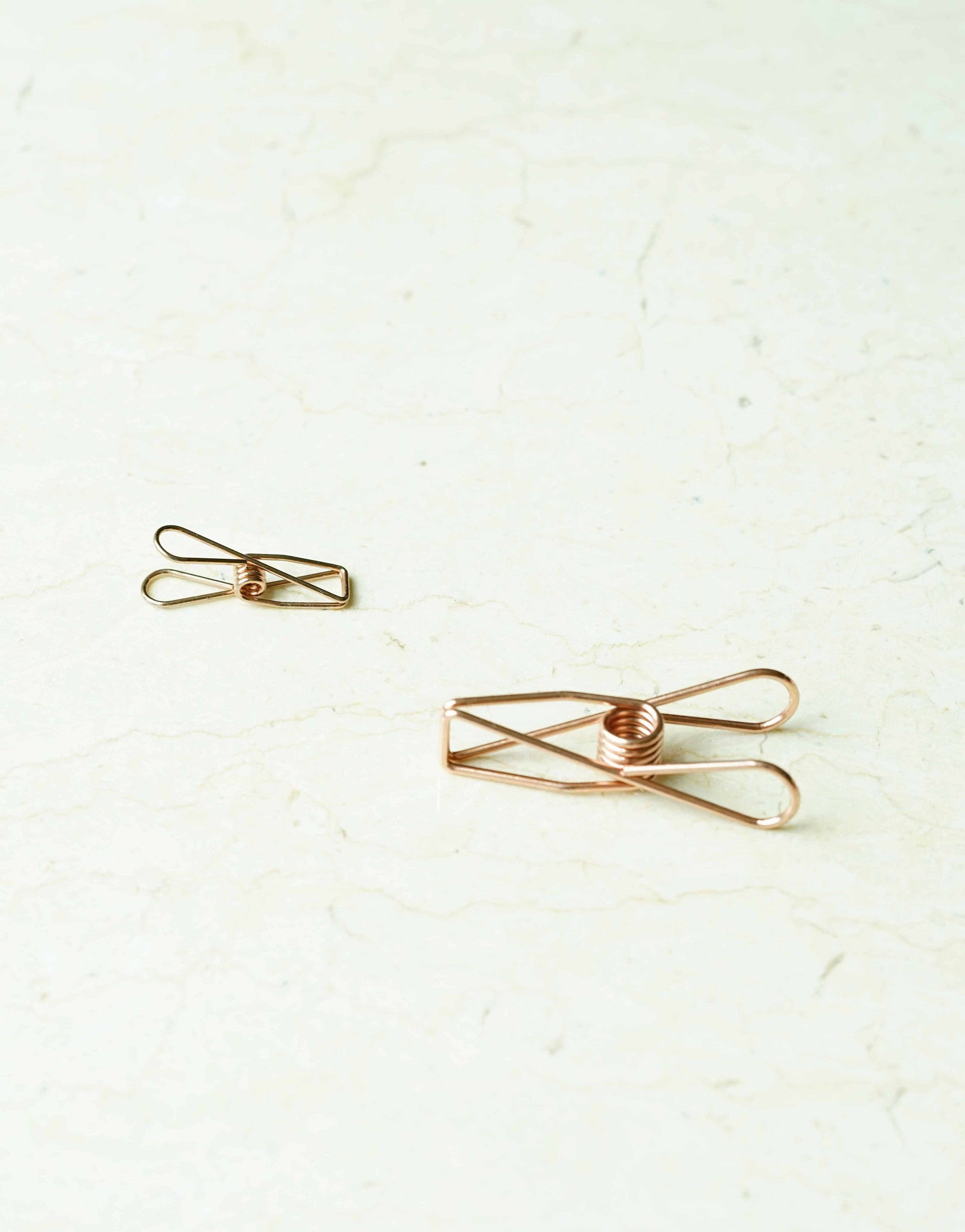 Wire Fly Paper Clip