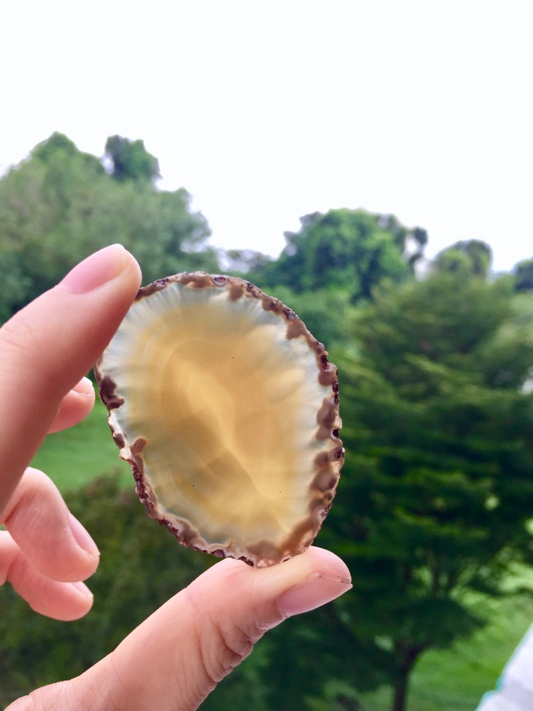 Agate Slice #40 by Vivian Lam