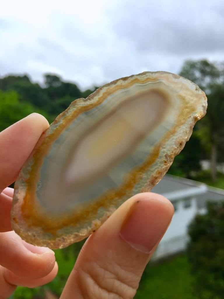 Agate Slice #31 by Vivian Lam