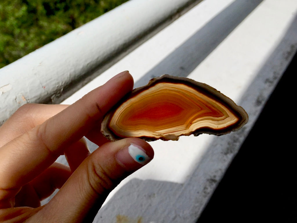 Agate Slice #13 by Vivian Lam
