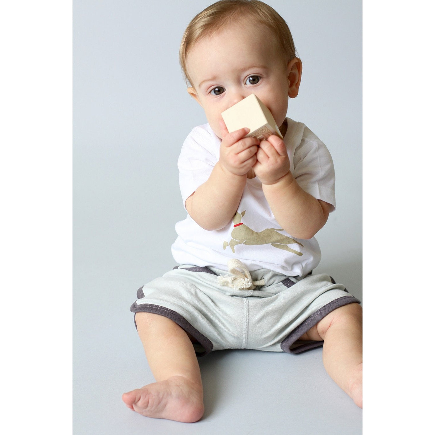 Puppy Love Short Sleeve Tee - Sapling Organic Baby Clothes