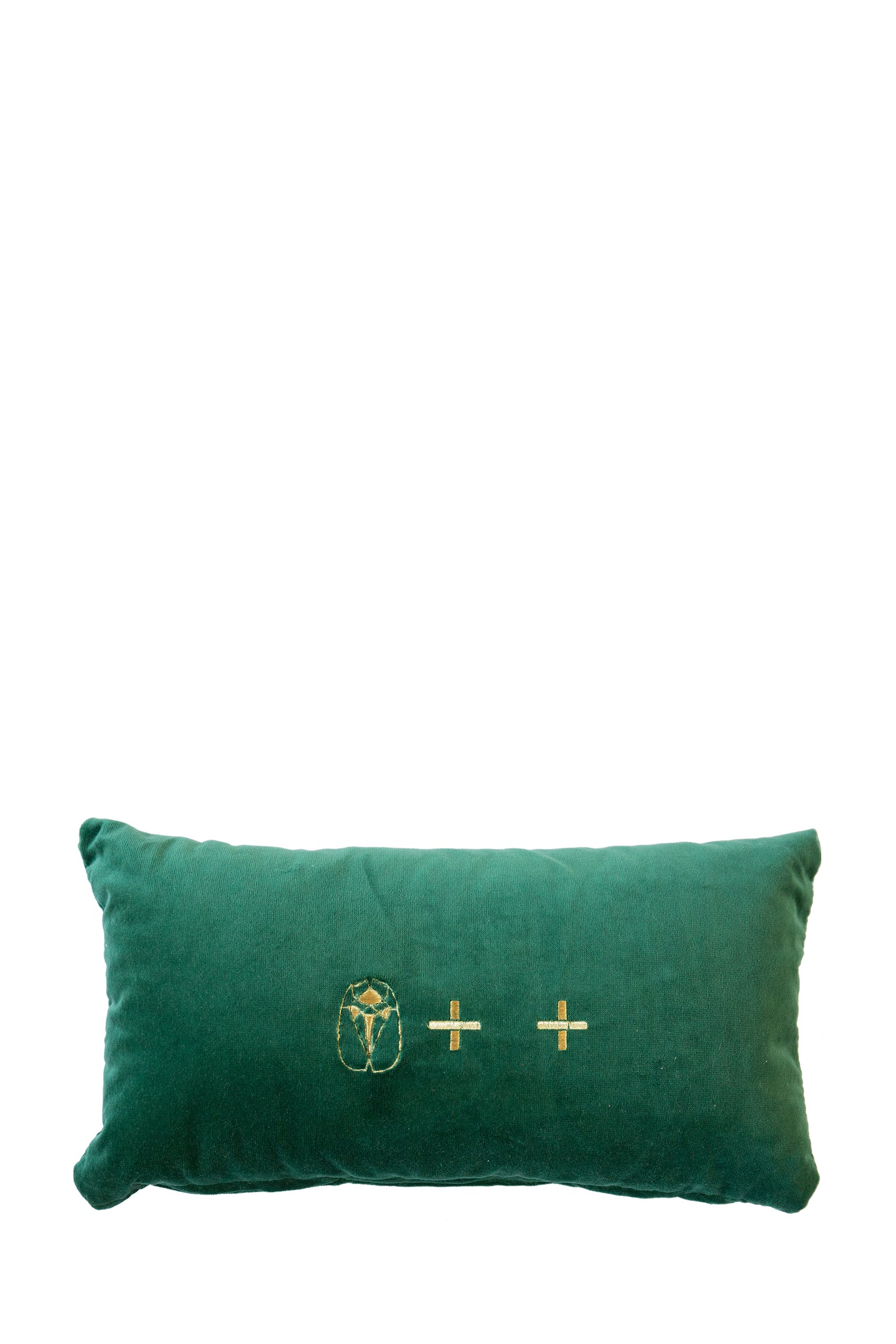 Velvet Cushion - Green Small