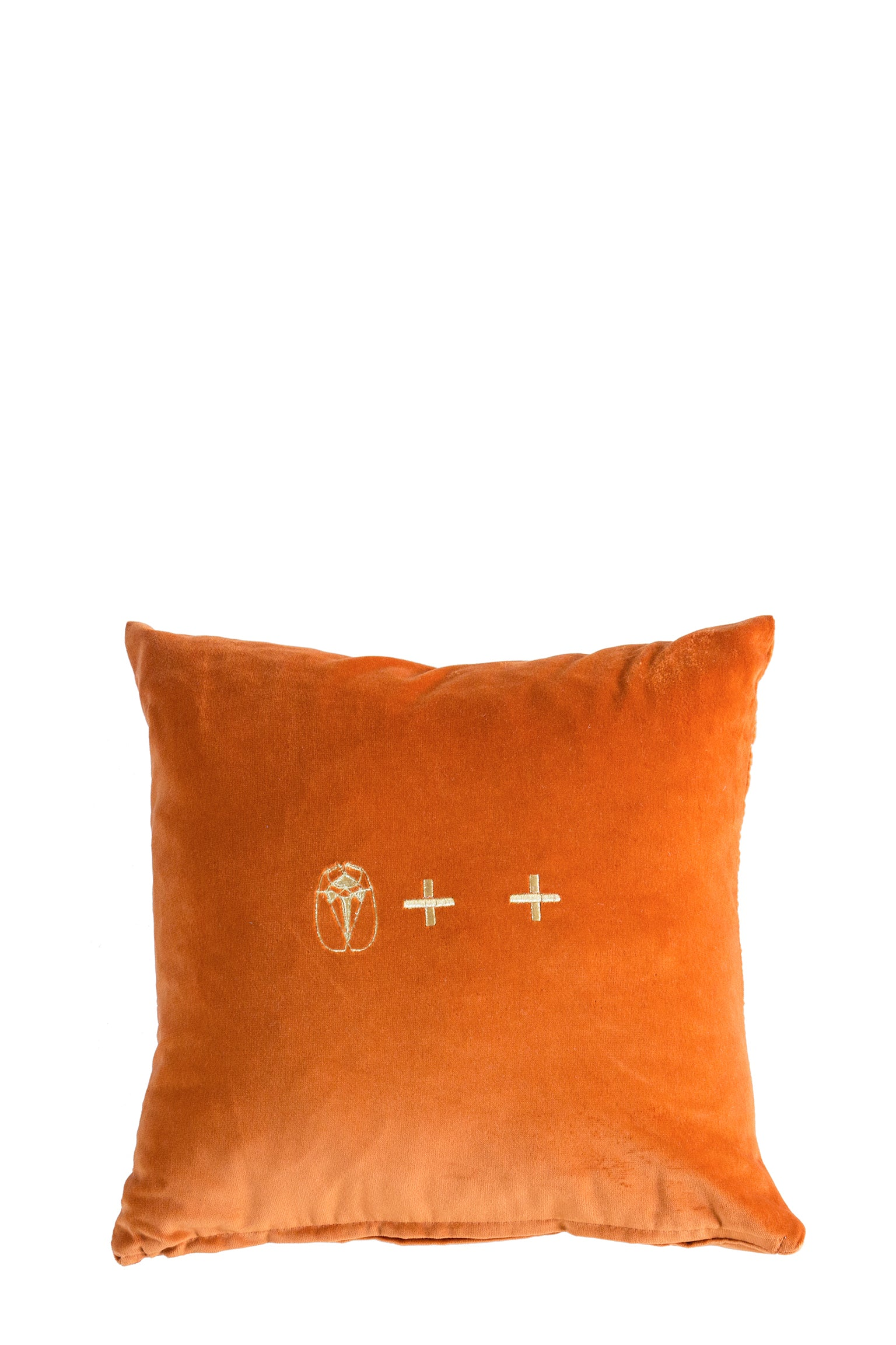 Ochre Velvet Cushion