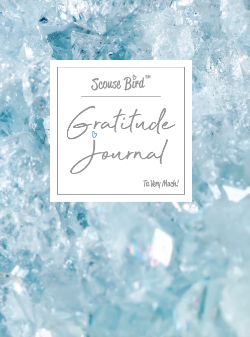 Gratitude & Intention Journal - NEW FOR 2020