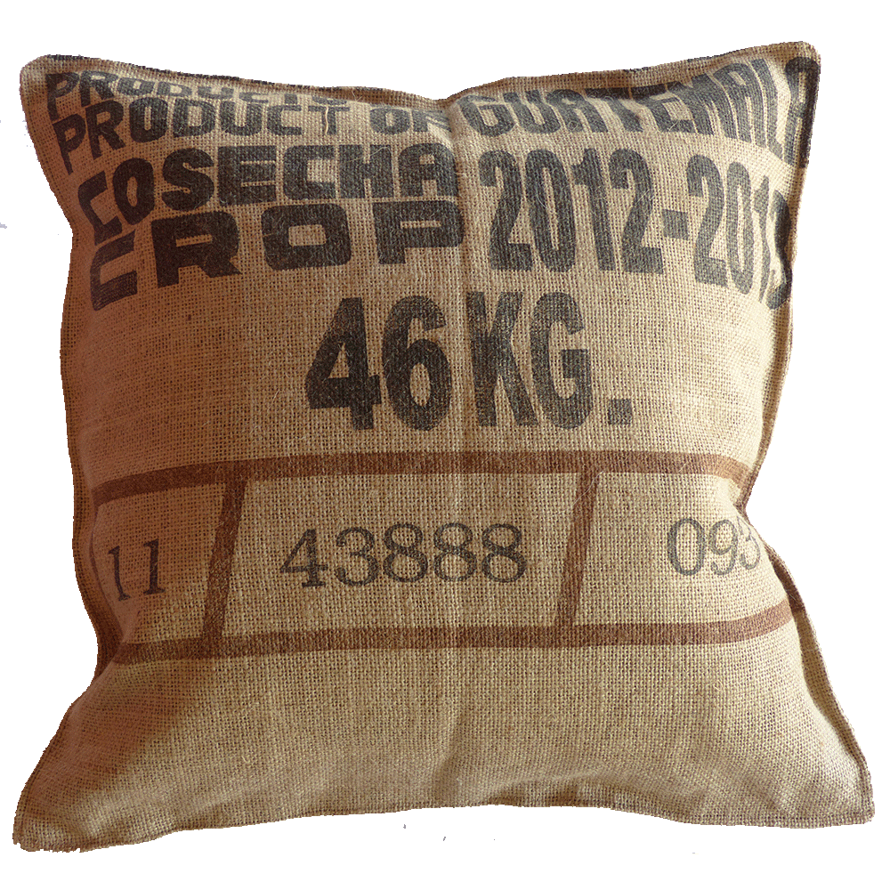Coffee Bag Pillow - Bella Carmona