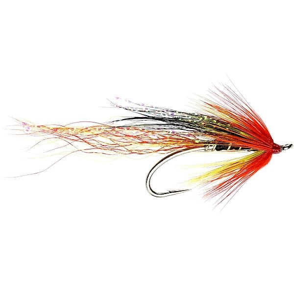 Allys Cascade Single