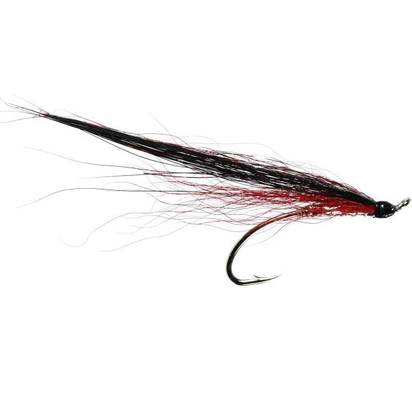 Collie Dog Salmon Single