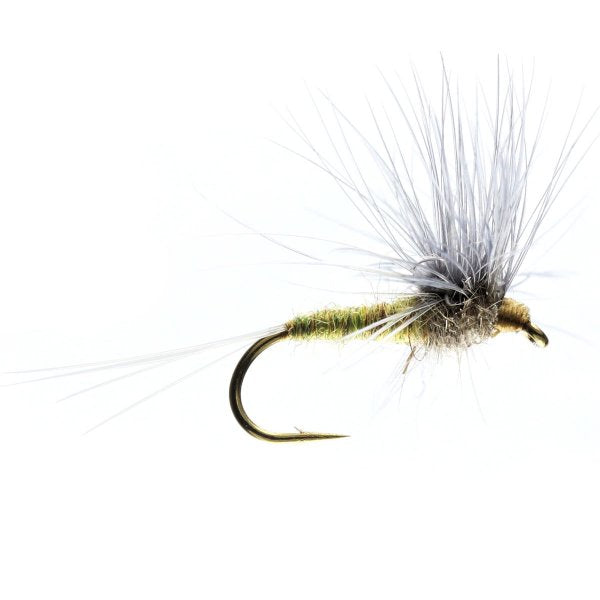 BWO Stacked Hackle