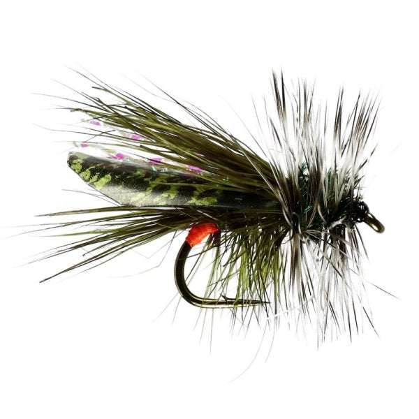 Seducer Sooty Olive Sedge