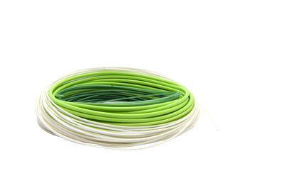Scierra Salmon Integrated DH Fly Line