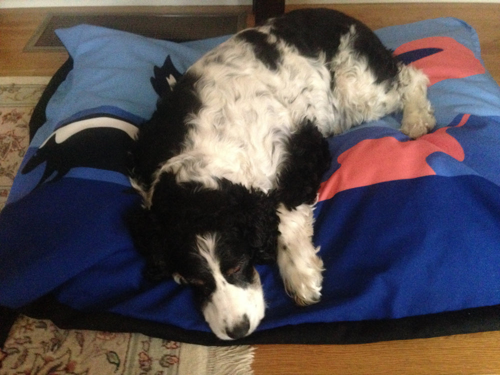 Skunk Dog Bed - SummerTies