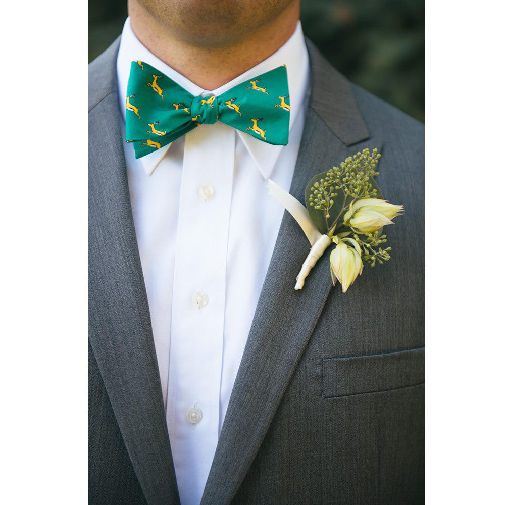 Springbok Bow Tie - Printed Silk - SummerTies