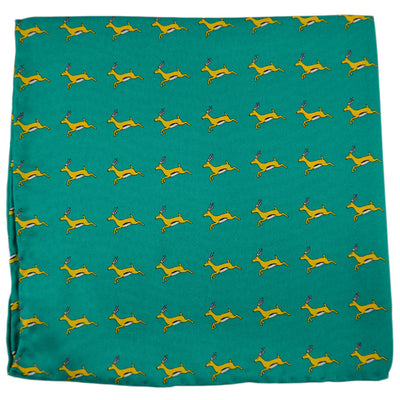 Springbok Pocket Square - SummerTies  - 2