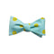 Sand Dollar Bow Tie - Printed Silk - SummerTies