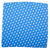 Bear-Lion Pocket Square - Blue - SummerTies