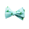 Frog Bow Tie - Light Blue - SummerTies