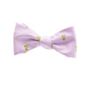Mint Julep Bow Tie - SummerTies  - 1