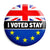 Remain I Voted to Stay Referendum - EU European Union Button Badge
