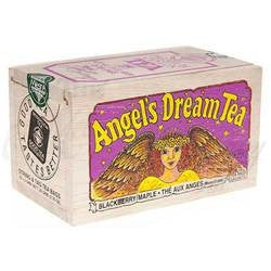 Angel's Dream